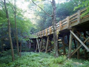 bridgebuilders timber1