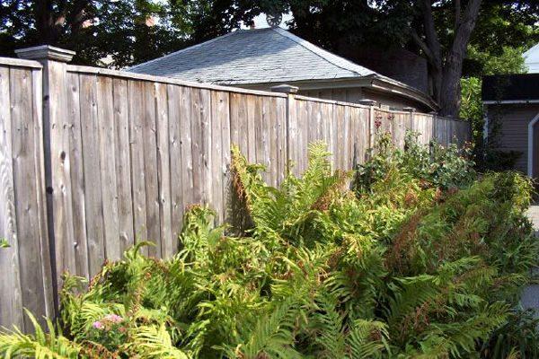 katahdin cedar fence