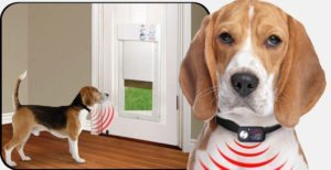 How to choose the right smart pet door katahdin cedar log homes this option may not work if your pet loses his collar often or if you have more than one pet eventshaper