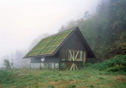 naturehouse_after2