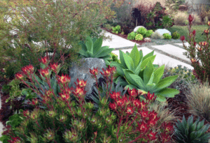 hot landscaping trends